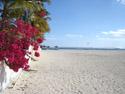 Part of the 5km Flic en Flac beach near the Villa Sunshine, Sep 2010.