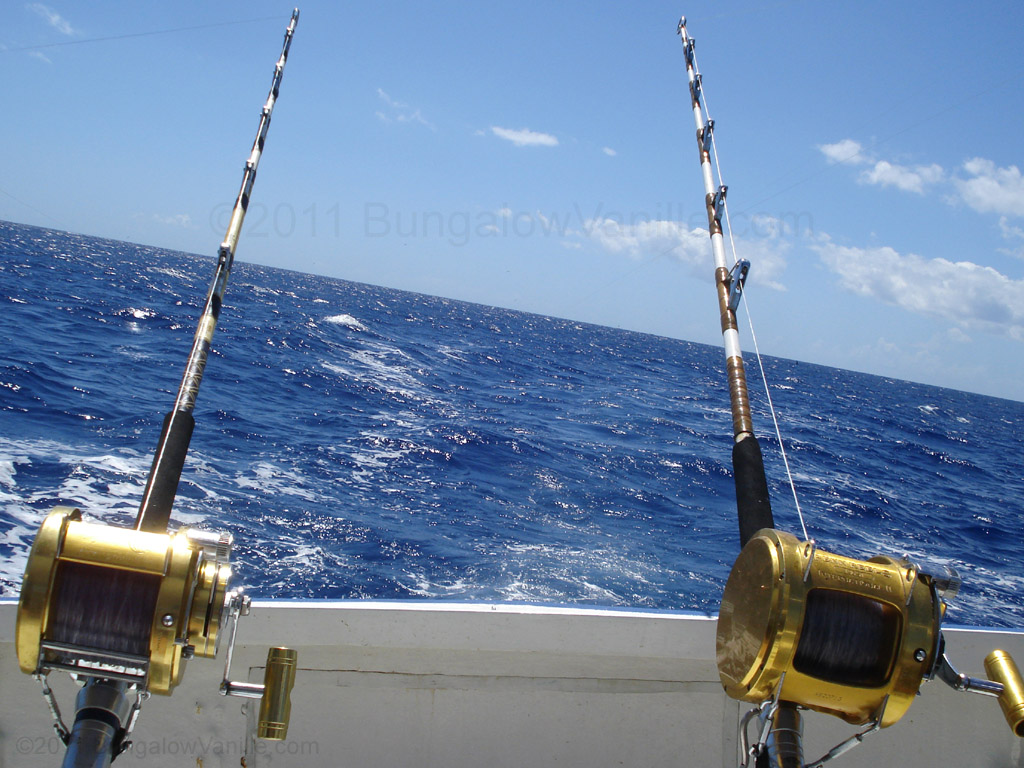 Big game fishing in mauritius bungalow vanille for Fishing boat games